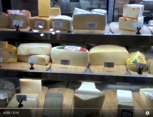 Episode 3 — FIND YOUR PERFECT PAIRING AT THE SOUTHPORT CHEESE SHOPPE